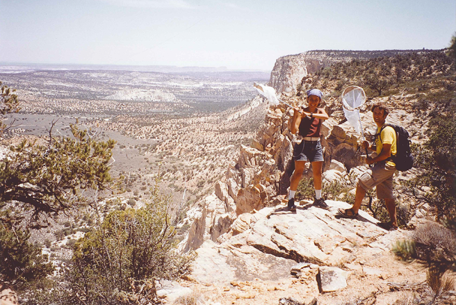 Image of two people with nets overlooking cliff.
