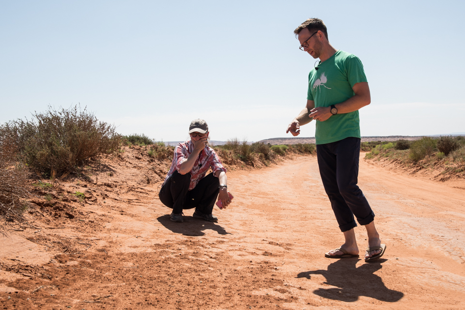 Image of two people looking at bees nests in road.