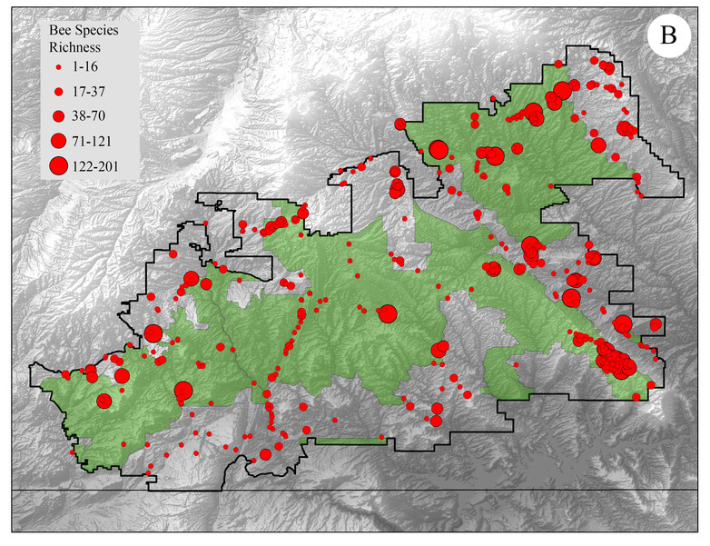 Map of bee species richness in the monument.