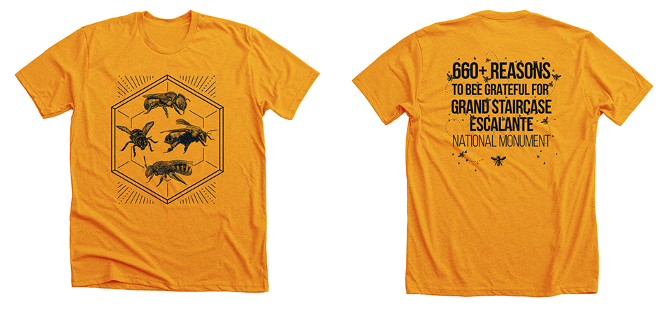 Image of bee t-shirt, front and back.